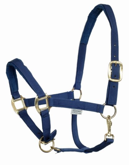 EQuest Halfter Dual Plus navy