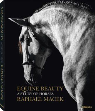 Die Schönheit der Pferde - Equine Beauty